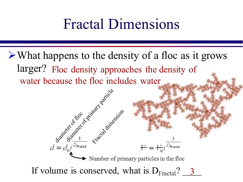 Fractal Dimensions What happens to the density of a floc as it grows larger
