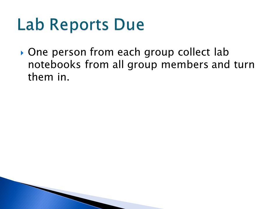 Lab Reports Due One person from each group collect lab notebooks from all group members and turn them in.