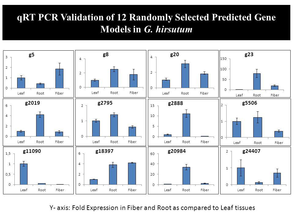 qRT PCR Validation of 12 Randomly Selected Predicted Gene Models in G