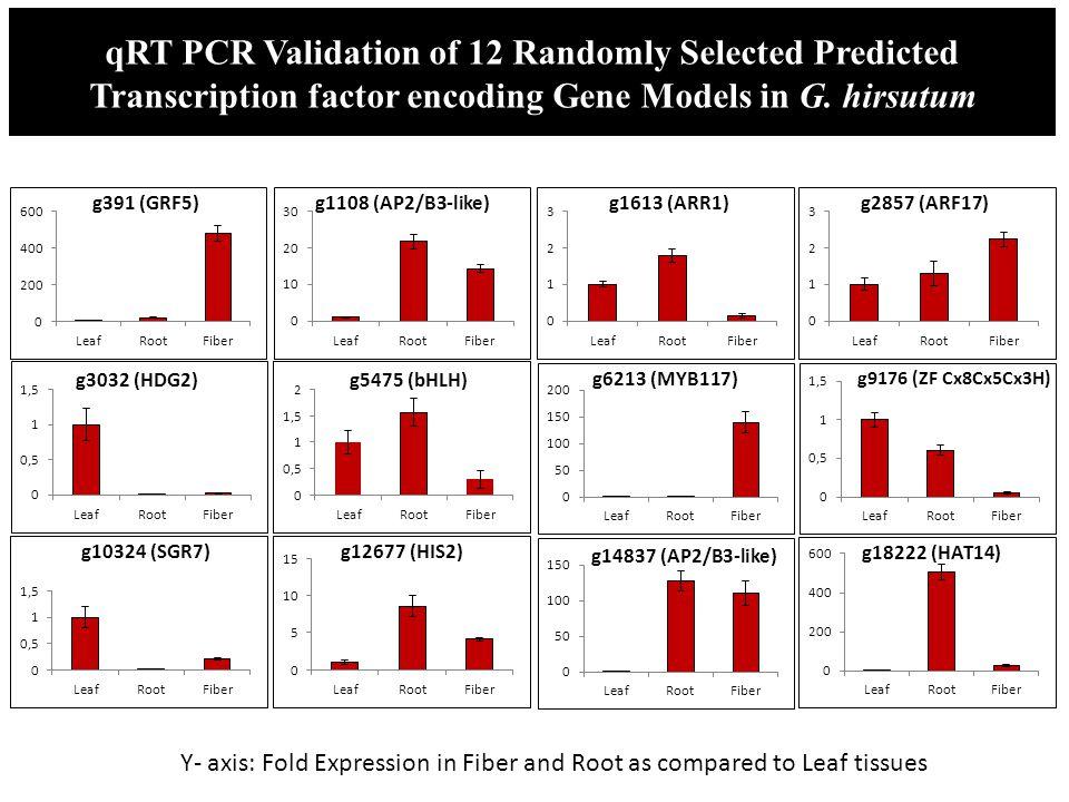 qRT PCR Validation of 12 Randomly Selected Predicted Transcription factor encoding Gene Models in G. hirsutum