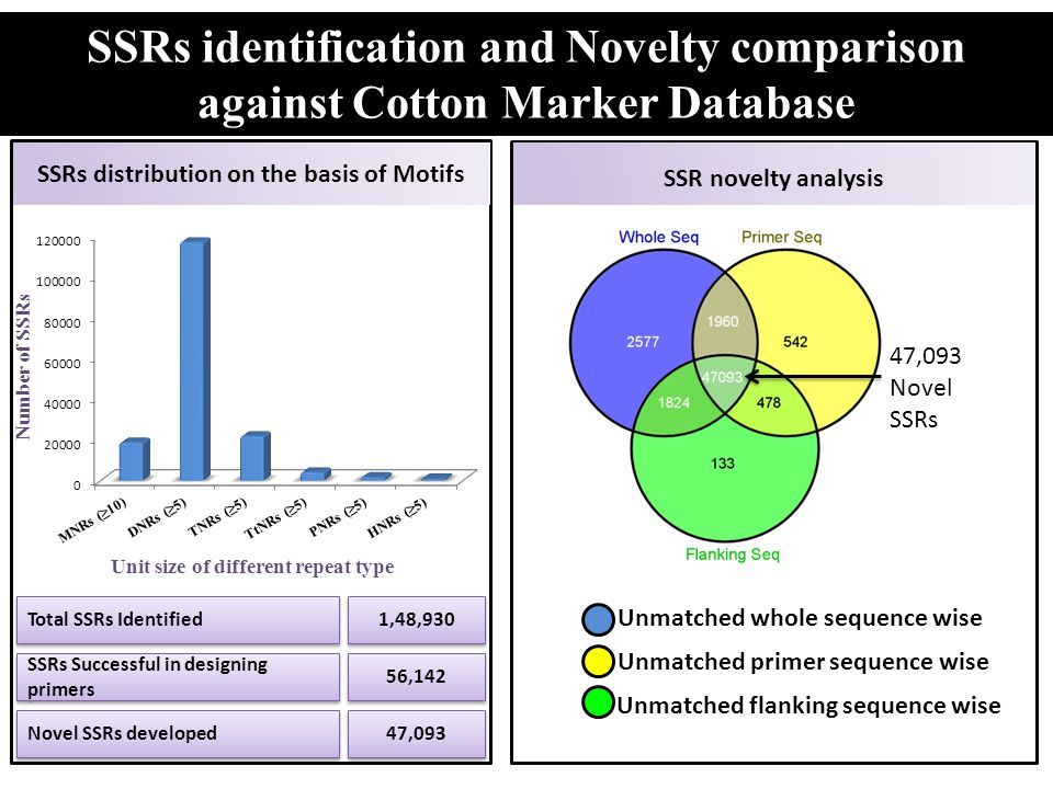 SSRs distribution on the basis of Motifs