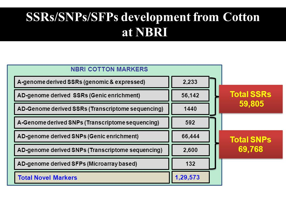 SSRs/SNPs/SFPs development from Cotton