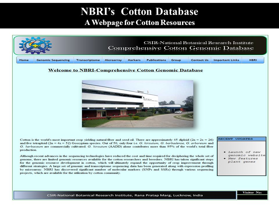 NBRI's Cotton Database A Webpage for Cotton Resources