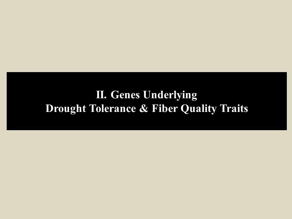 Drought Tolerance & Fiber Quality Traits