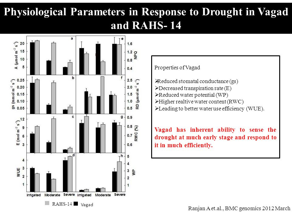 Physiological Parameters in Response to Drought in Vagad and RAHS- 14