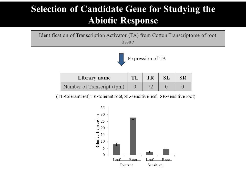 Selection of Candidate Gene for Studying the