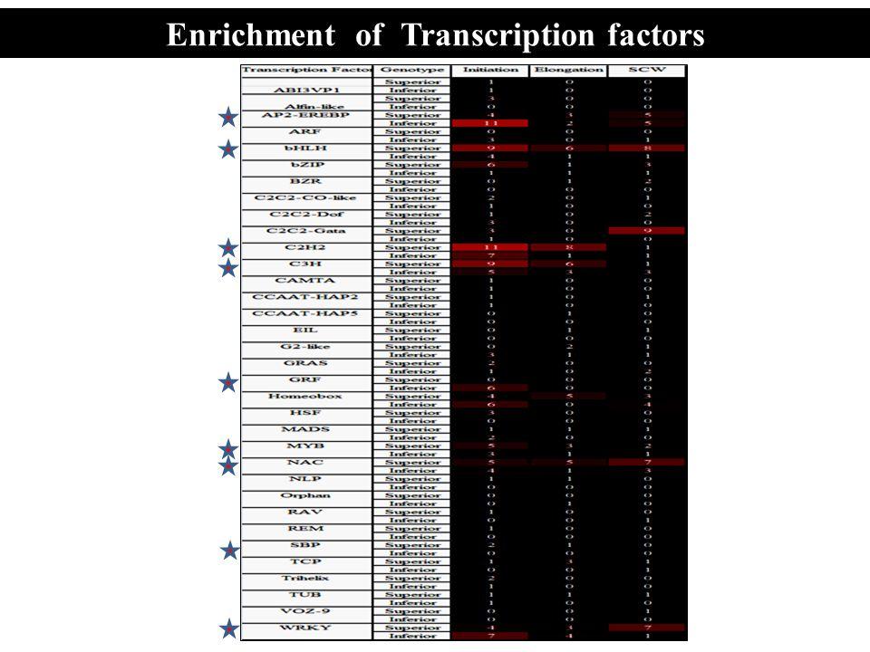 Enrichment of Transcription factors