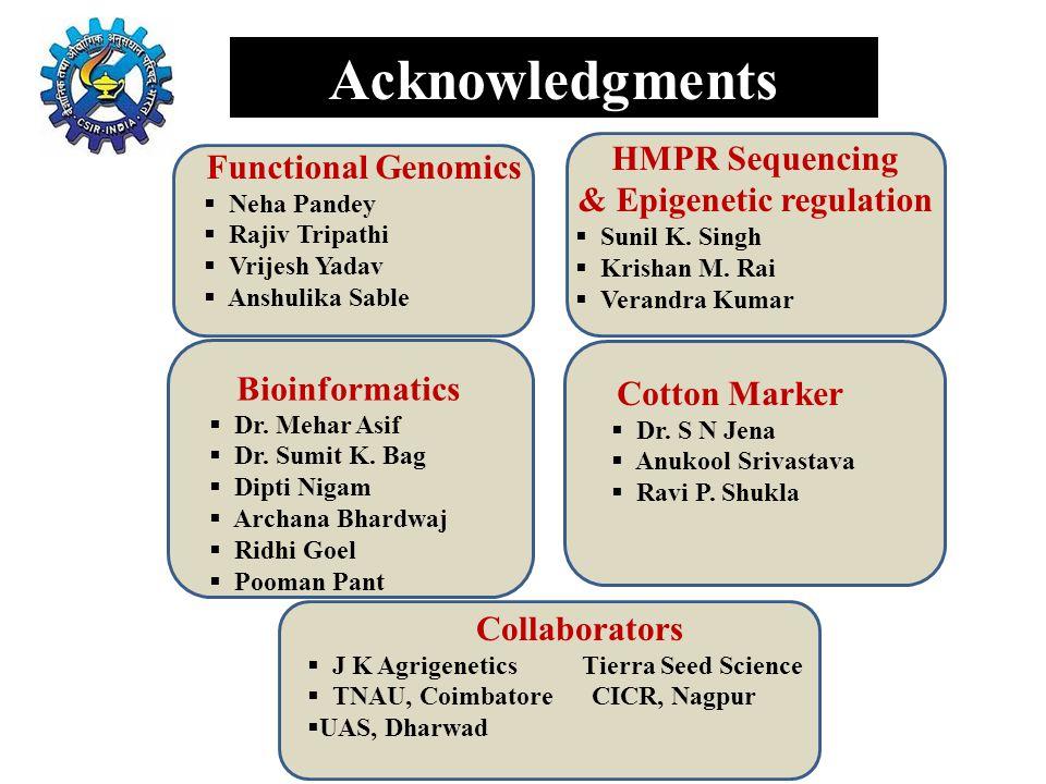 & Epigenetic regulation