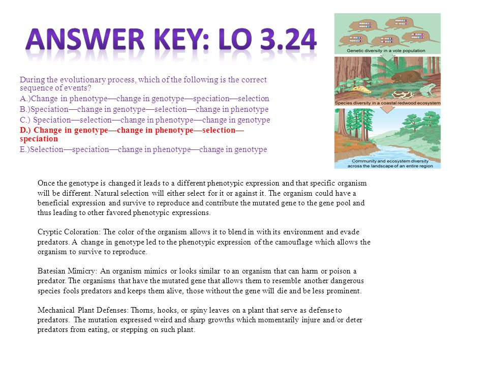 Answer Key: LO 3.24 During the evolutionary process, which of the following is the correct sequence of events