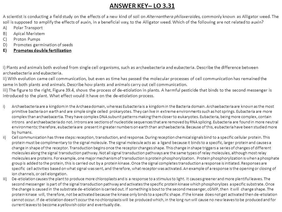 ANSWER KEY– LO 3.31