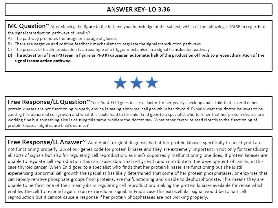 ANSWER KEY- LO 3.36