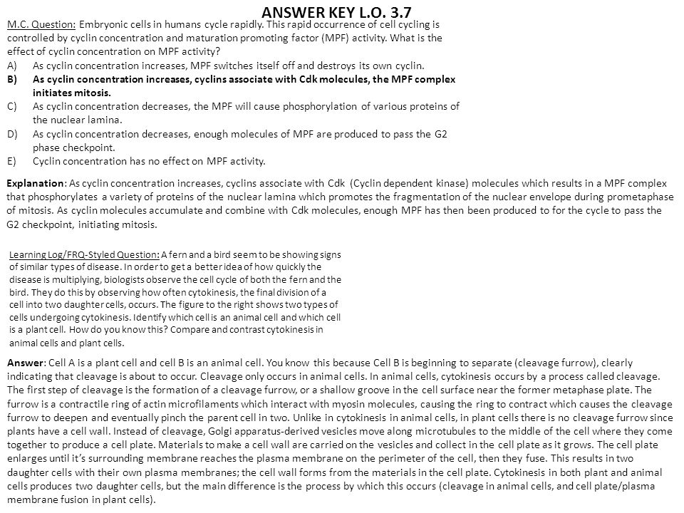 ANSWER KEY L.O. 3.7