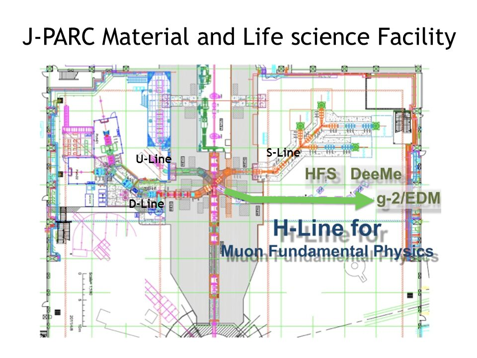 J-PARC Material and Life science Facility