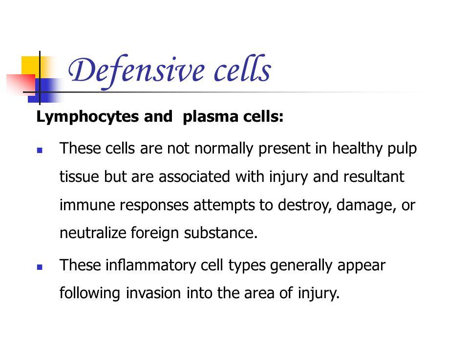 Defensive cells Lymphocytes and plasma cells: