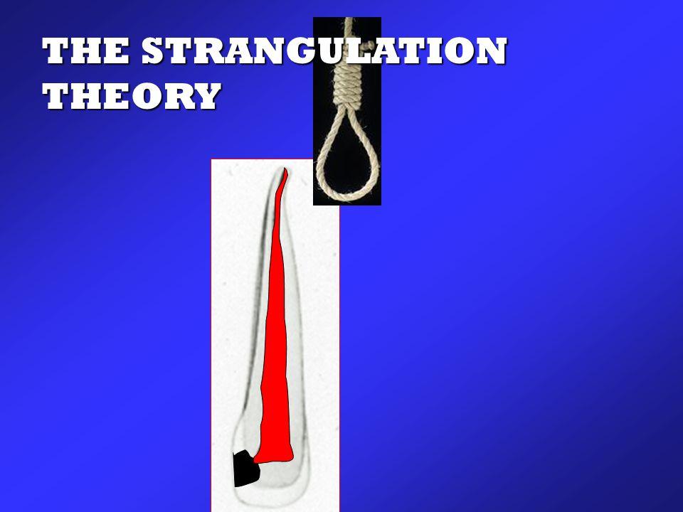 THE STRANGULATION THEORY