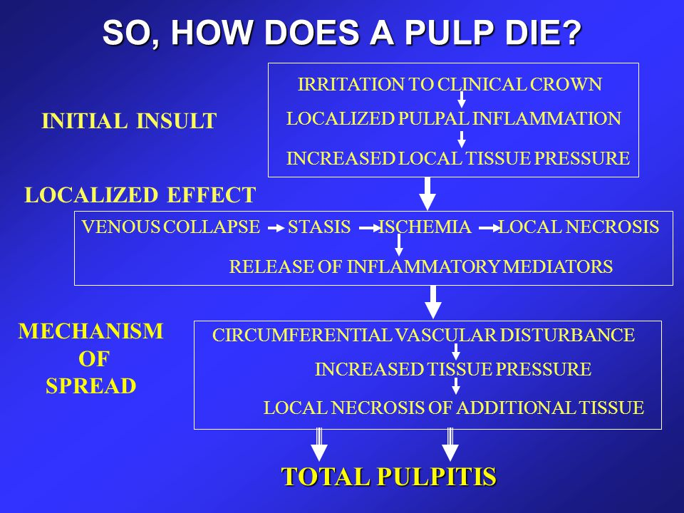 SO, HOW DOES A PULP DIE TOTAL PULPITIS INITIAL INSULT