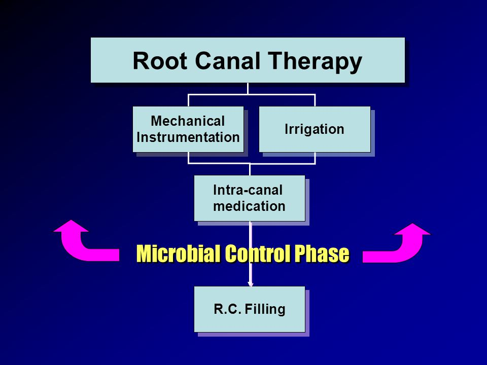 Microbial Control Phase