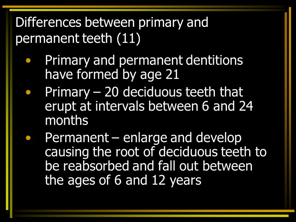Differences between primary and permanent teeth (11)