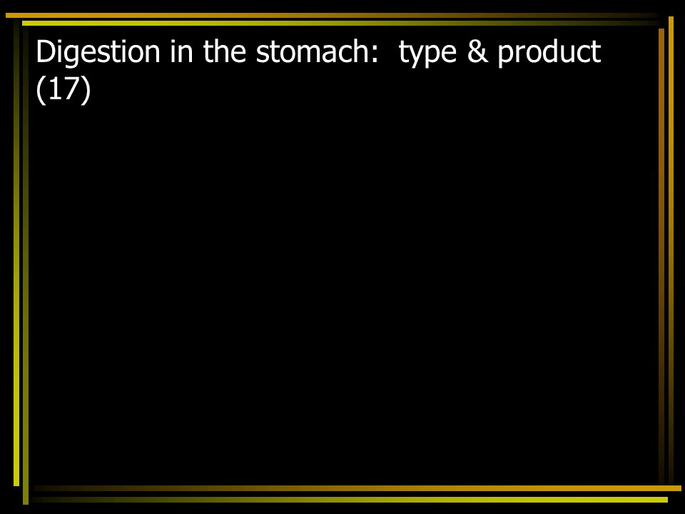 Digestion in the stomach: type & product (17)
