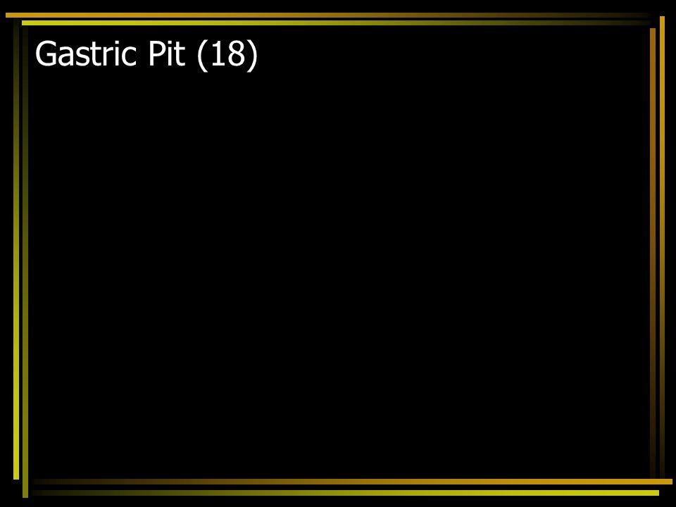 Gastric Pit (18)