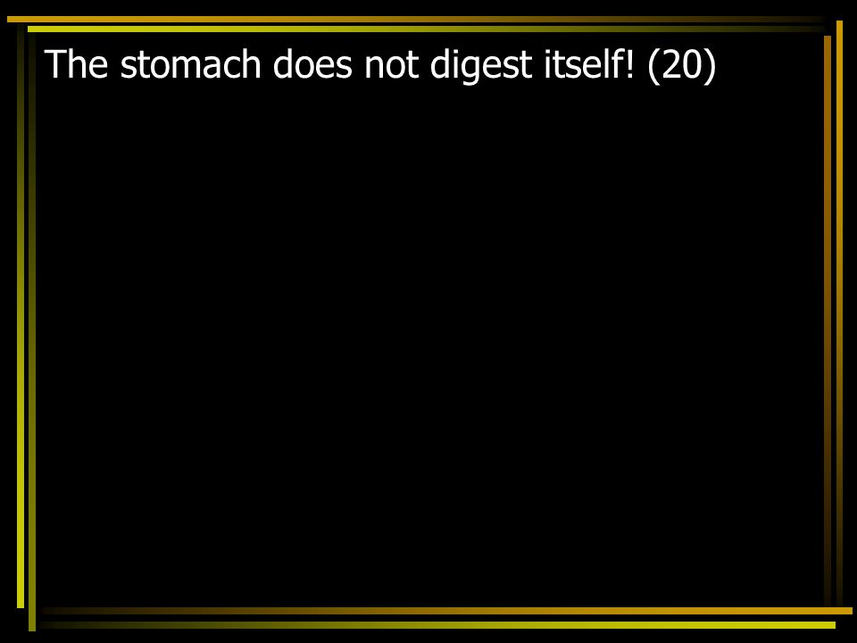 The stomach does not digest itself! (20)