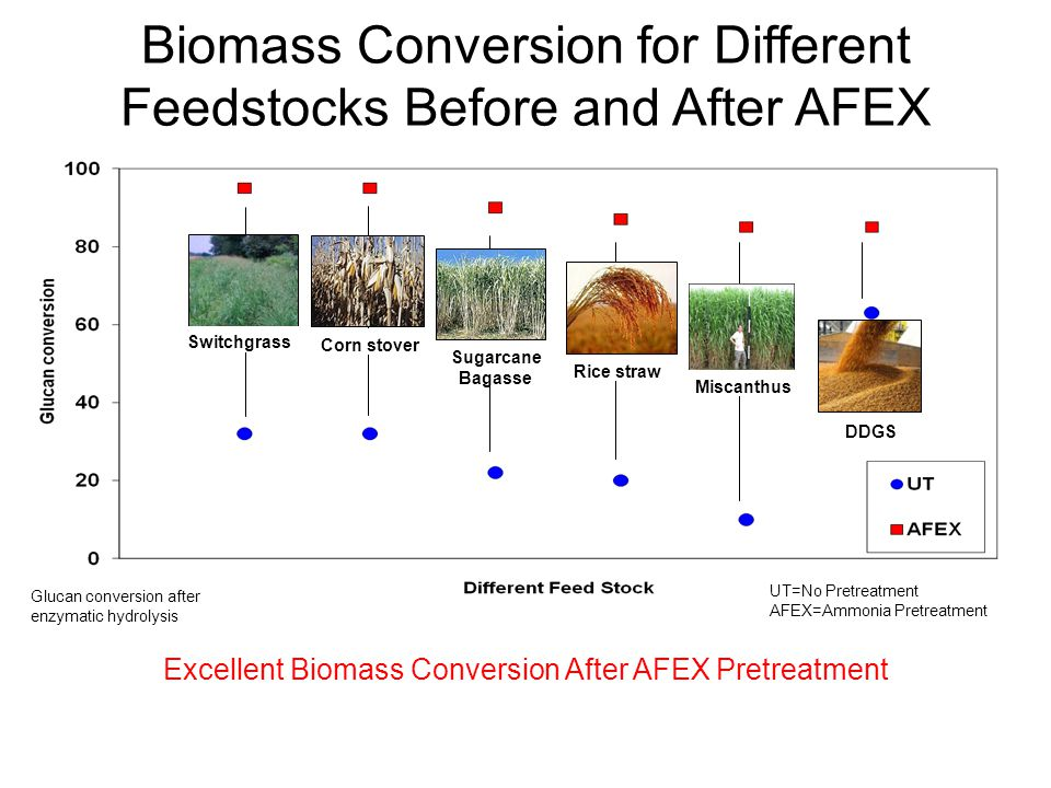 Biomass Conversion for Different Feedstocks Before and After AFEX