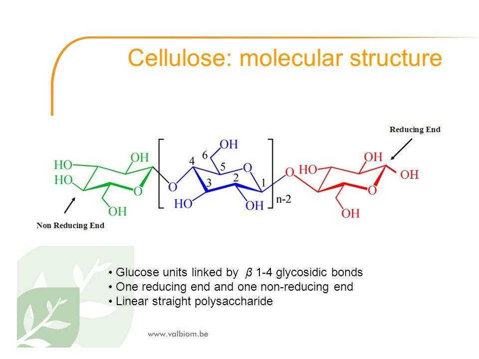 Cellulose: molecular structure