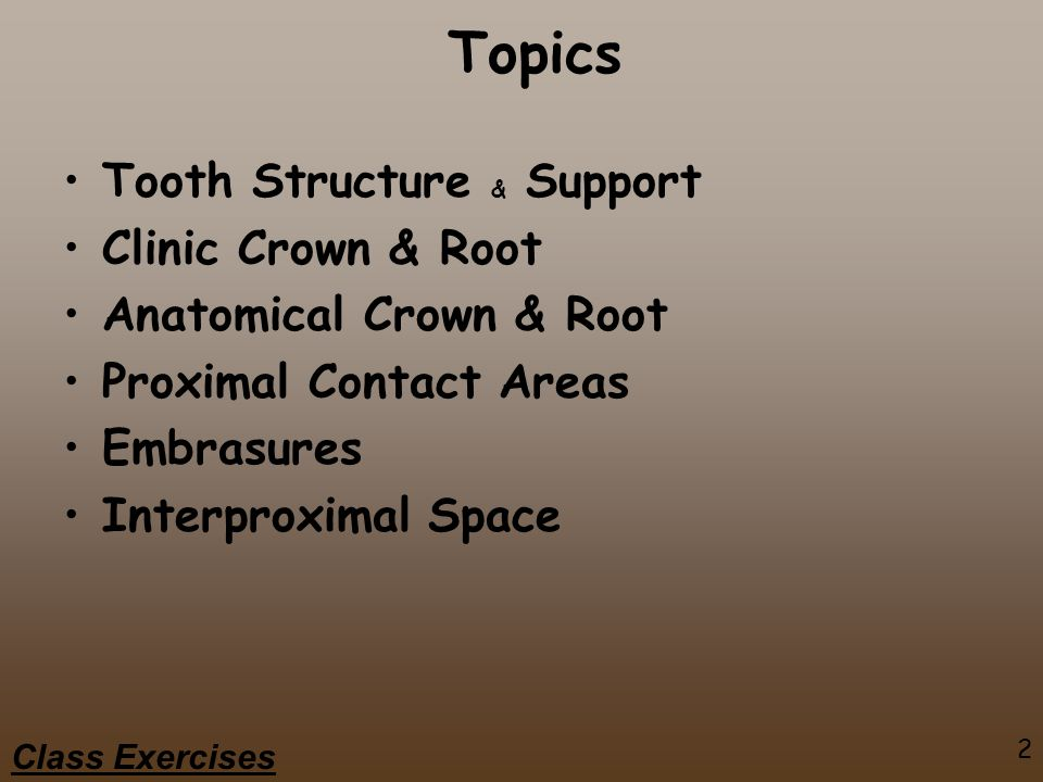 Topics Tooth Structure & Support Clinic Crown & Root