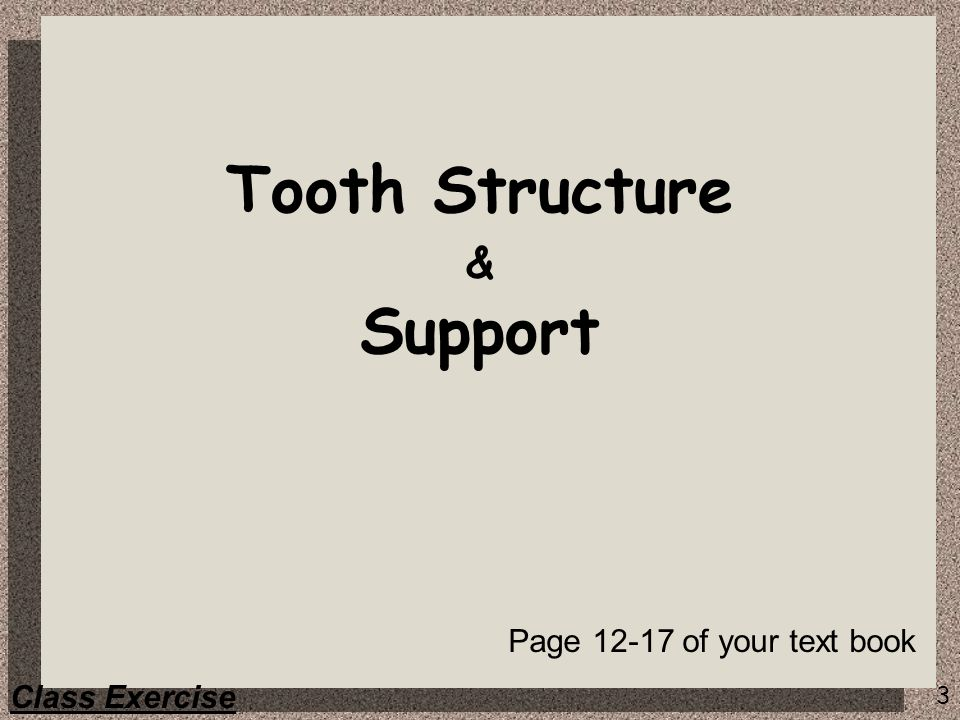 Tooth Structure & Support