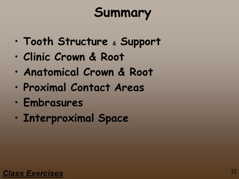 Summary Tooth Structure & Support Clinic Crown & Root