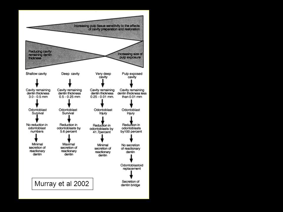 Murray et al 2002