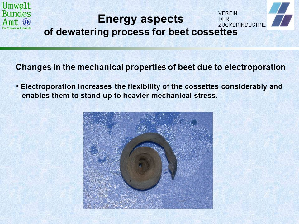 of dewatering process for beet cossettes