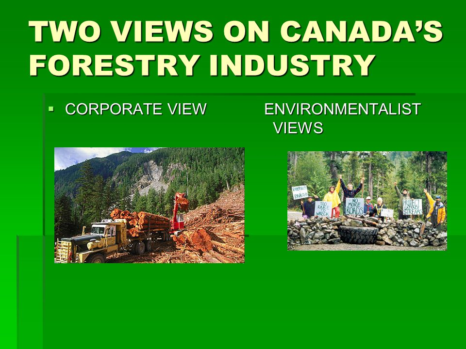 TWO VIEWS ON CANADA'S FORESTRY INDUSTRY
