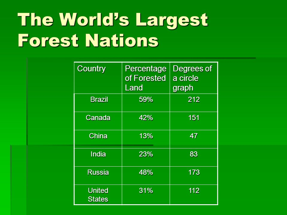 The World's Largest Forest Nations
