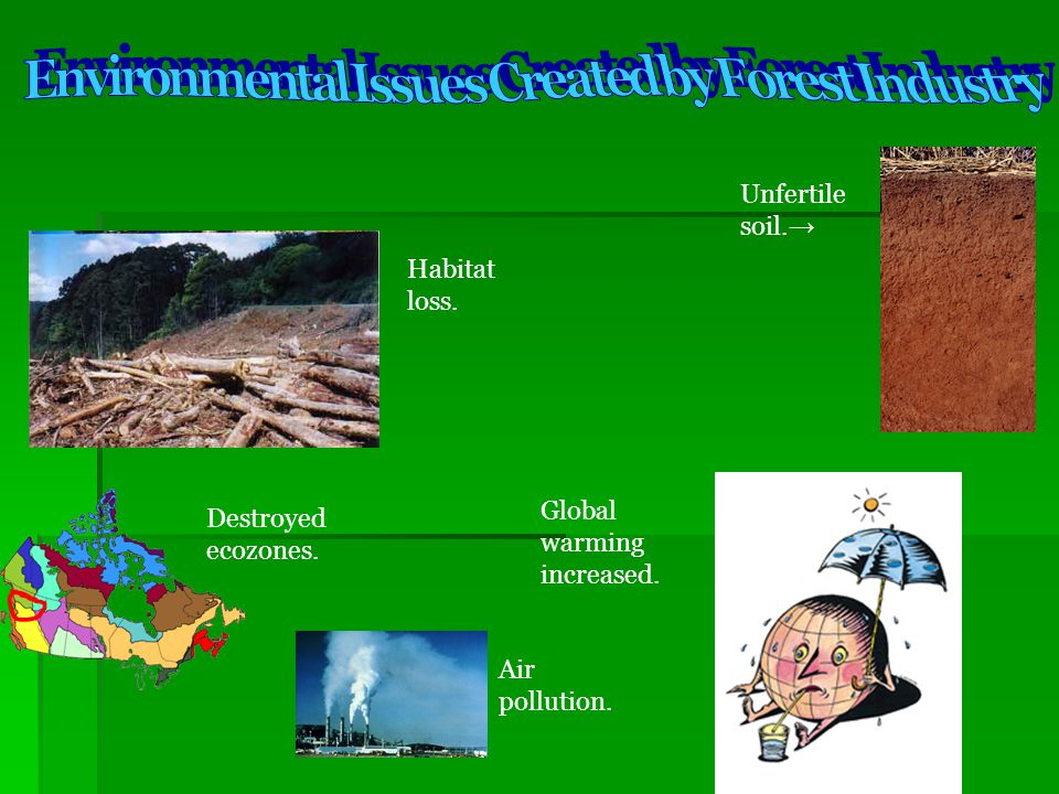 Environmental Issues Created by Forest Industry