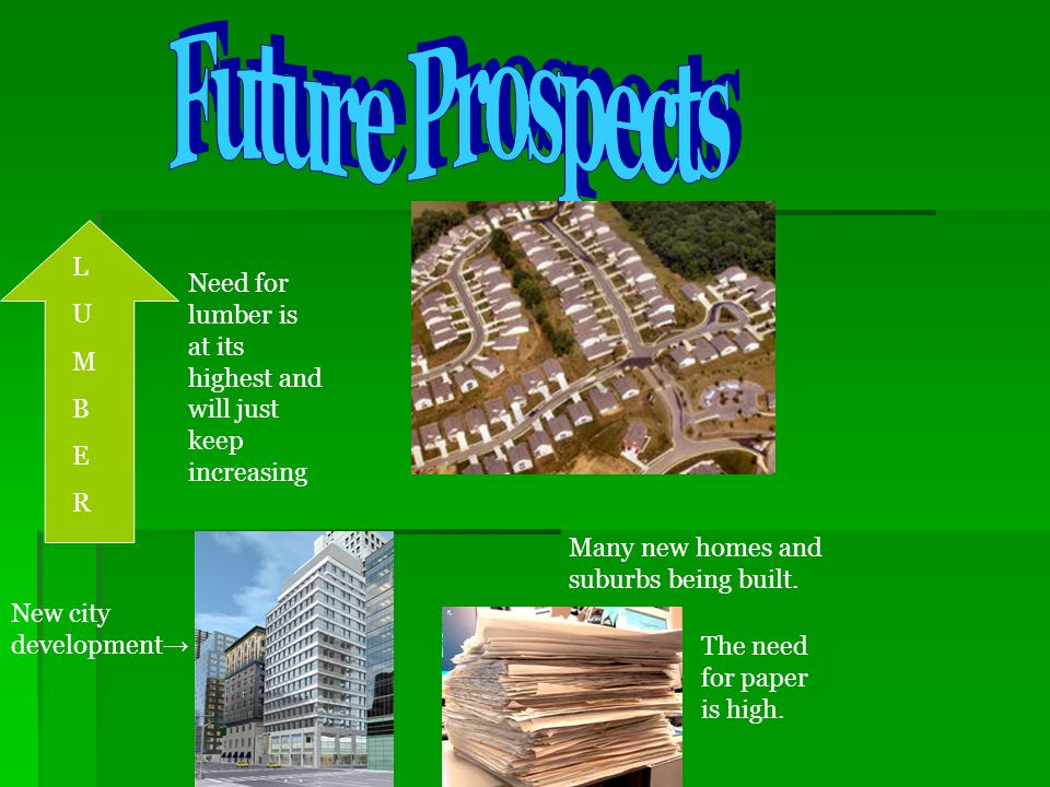 Future Prospects L. U. M. B. E. R. Need for lumber is at its highest and will just keep increasing.