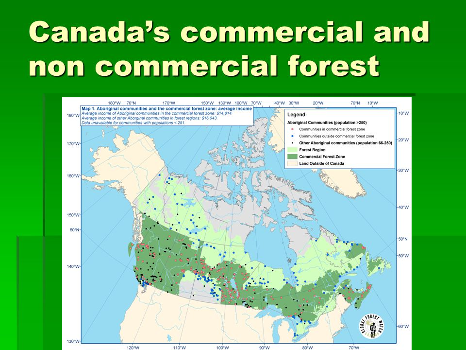 Canada's commercial and non commercial forest