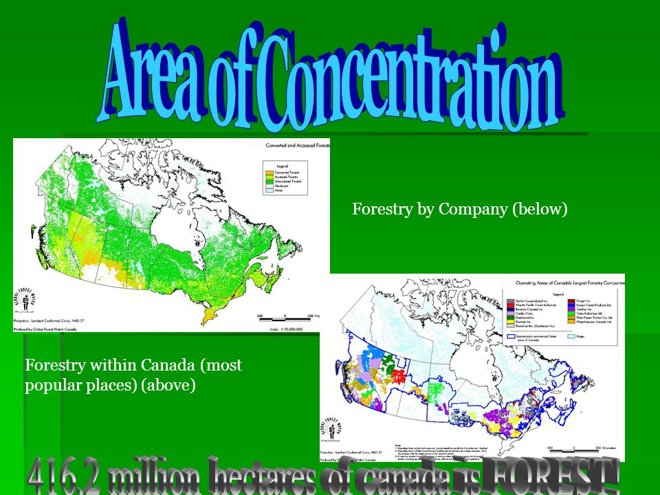 416.2 million hectares of canada is FOREST!