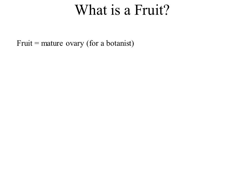 What is a Fruit Fruit = mature ovary (for a botanist)