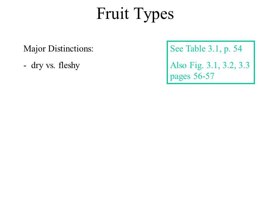 Fruit Types Major Distinctions: dry vs. fleshy See Table 3.1, p. 54