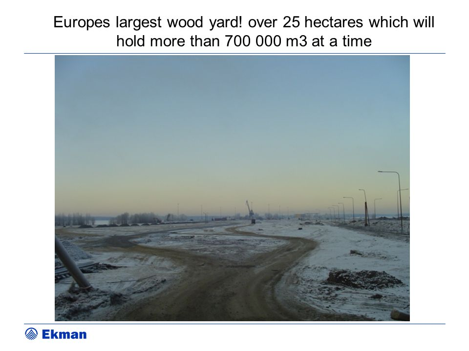 Europes largest wood yard