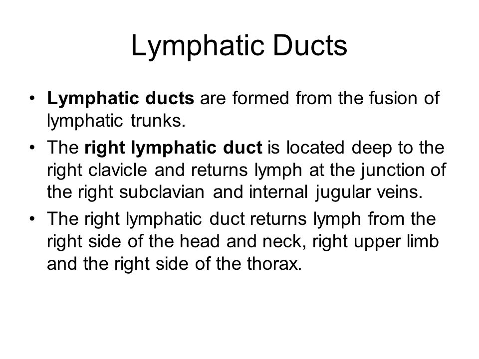 Lymphatic Ducts Lymphatic ducts are formed from the fusion of lymphatic trunks.