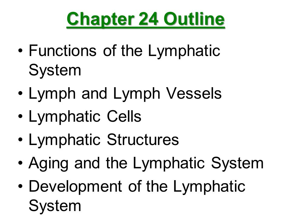 Chapter 24 Outline Functions of the Lymphatic System