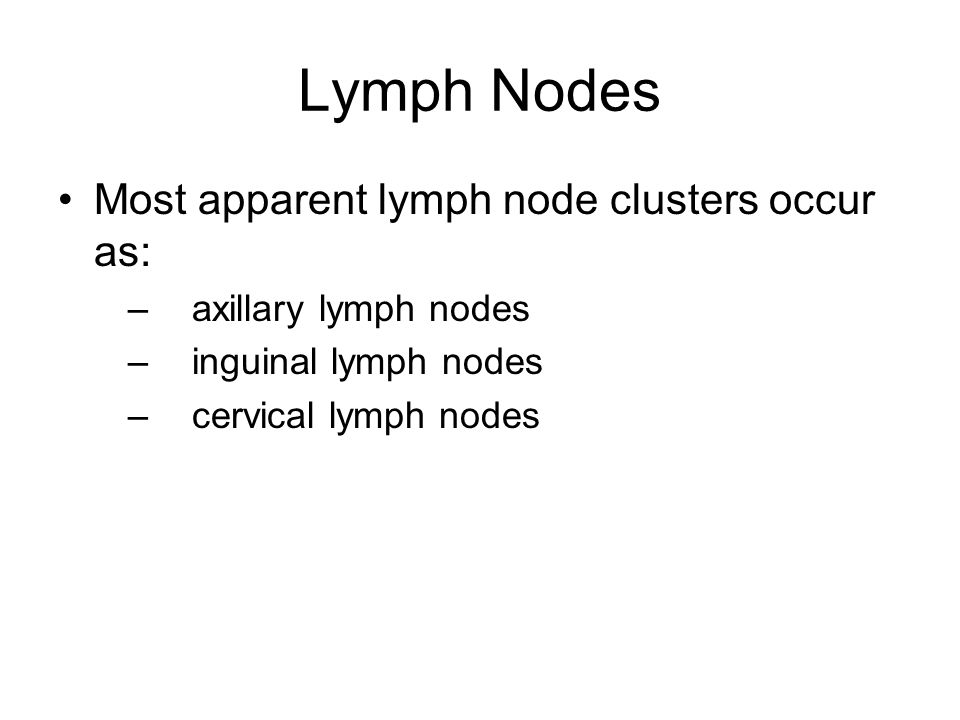 Lymph Nodes Most apparent lymph node clusters occur as: