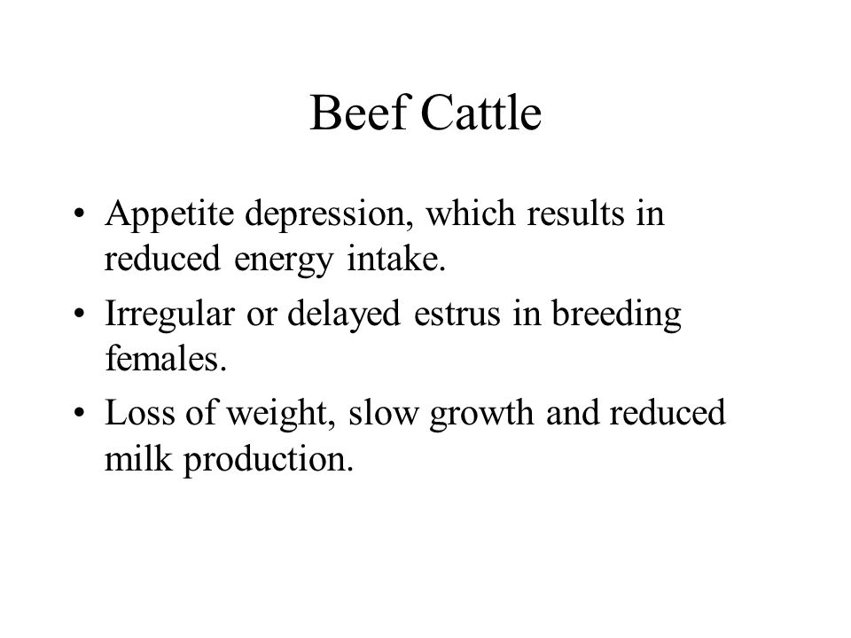 Beef Cattle Appetite depression, which results in reduced energy intake. Irregular or delayed estrus in breeding females.