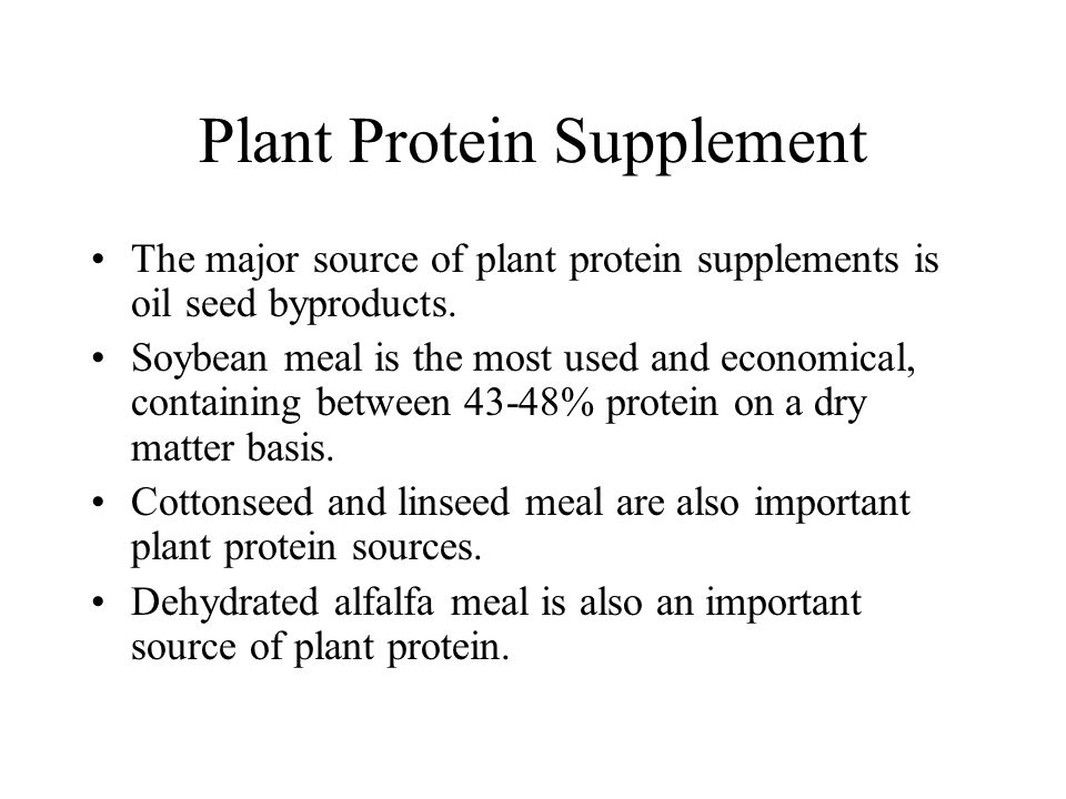 Plant Protein Supplement