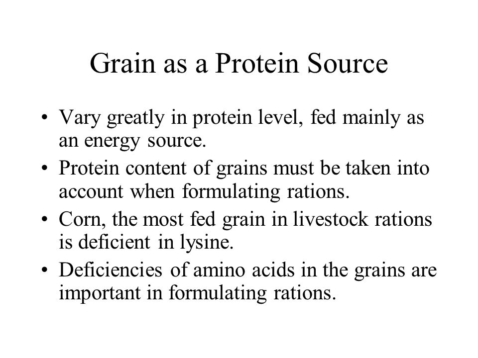 Grain as a Protein Source