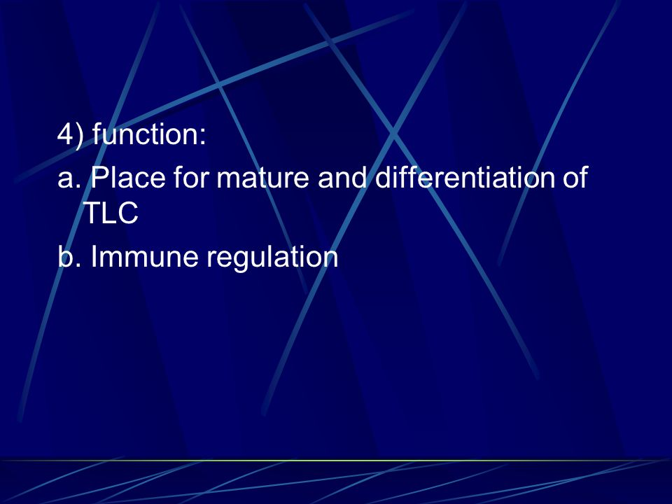 4) function: a. Place for mature and differentiation of TLC b. Immune regulation