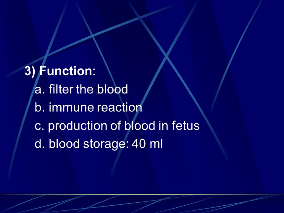 3) Function: a. filter the blood. b. immune reaction.