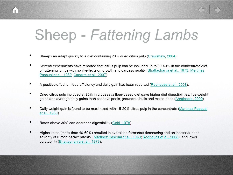 Sheep - Fattening Lambs